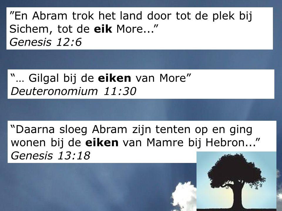 """""""En Abram trok het land door tot de plek bij Sichem, tot de eik More..."""" Genesis 12:6 """"Daarna sloeg Abram zijn tenten op en ging wonen bij de eiken va"""
