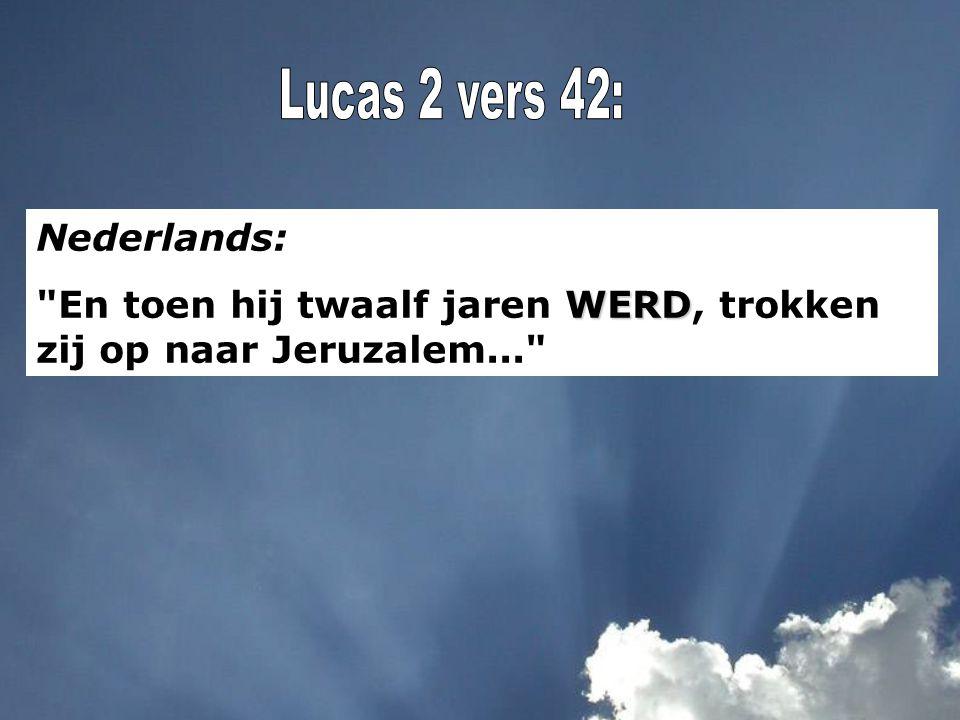 Nederlands: WERD