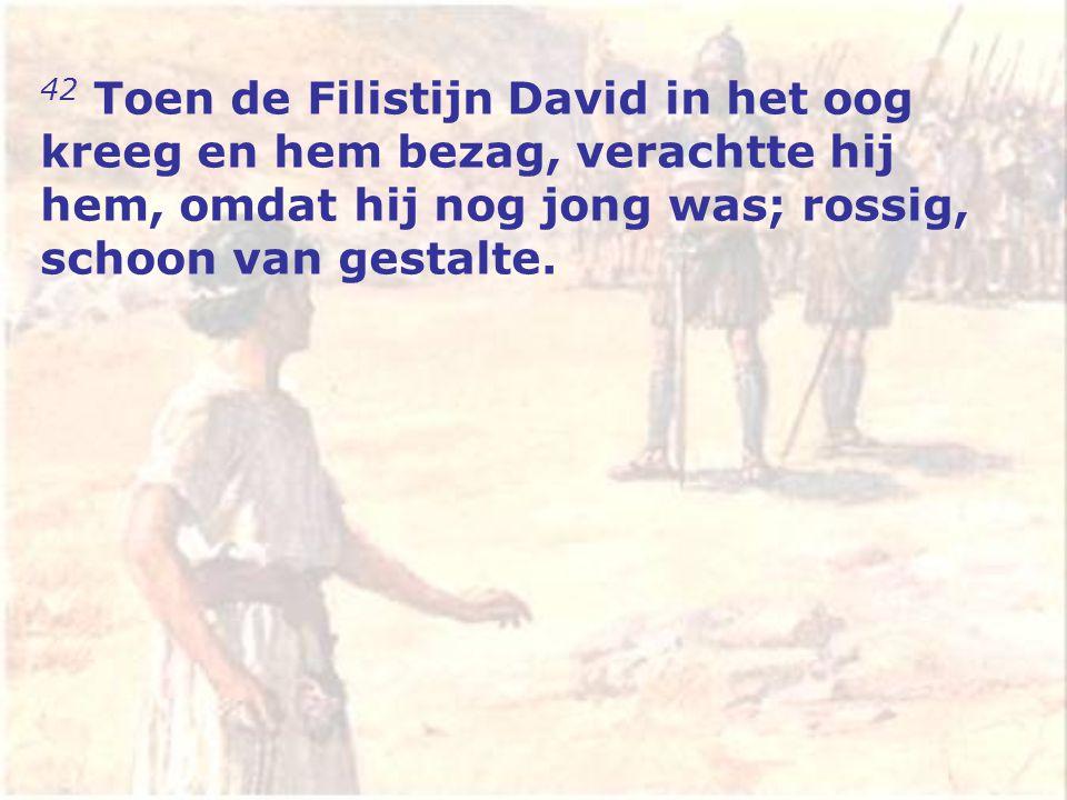 42 Toen de Filistijn David in het oog kreeg en hem bezag, verachtte hij hem, omdat hij nog jong was; rossig, schoon van gestalte.