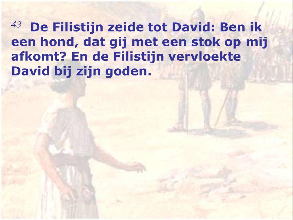 43 De Filistijn zeide tot David: Ben ik een hond, dat gij met een stok op mij afkomt.