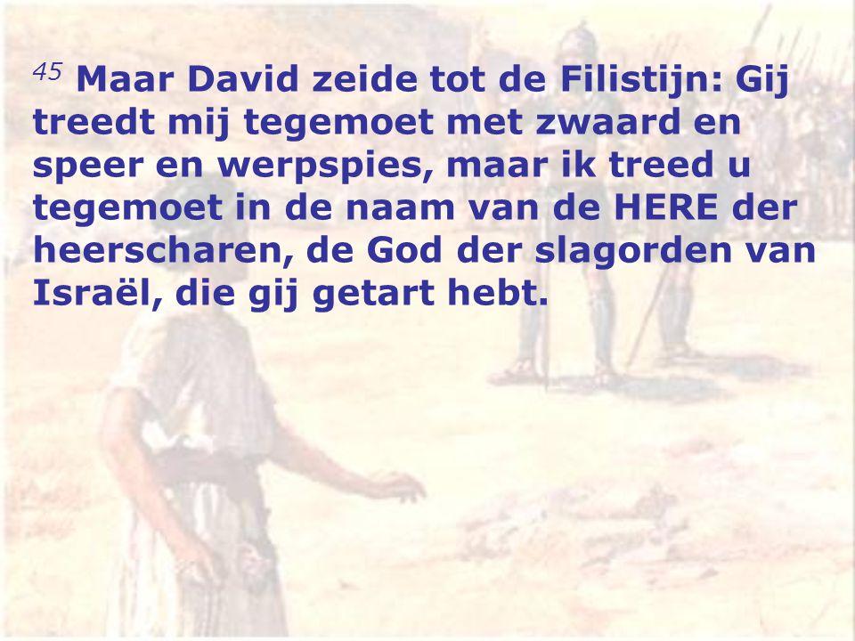 45 Maar David zeide tot de Filistijn: Gij treedt mij tegemoet met zwaard en speer en werpspies, maar ik treed u tegemoet in de naam van de HERE der heerscharen, de God der slagorden van Israël, die gij getart hebt.