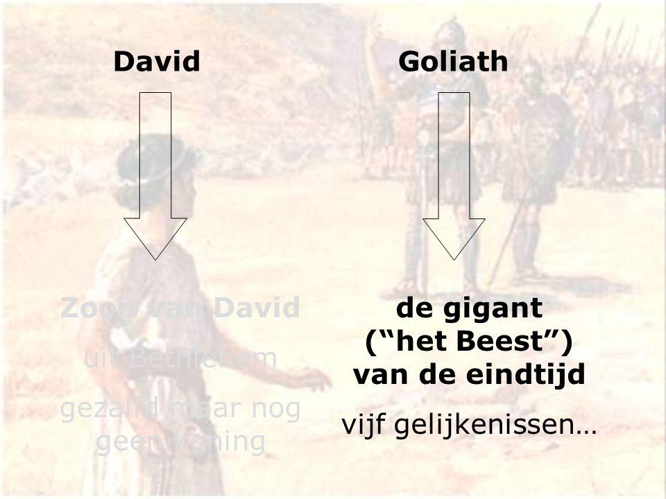 David Zoon van David uit Bethlehem gezalfd maar nog geen koning de gigant ( het Beest ) van de eindtijd vijf gelijkenissen… Goliath