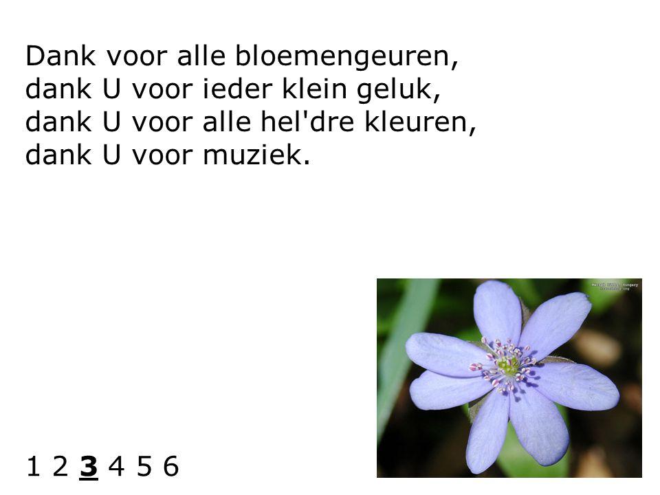 Dank voor alle bloemengeuren, dank U voor ieder klein geluk, dank U voor alle hel'dre kleuren, dank U voor muziek. 1 2 3 4 5 6
