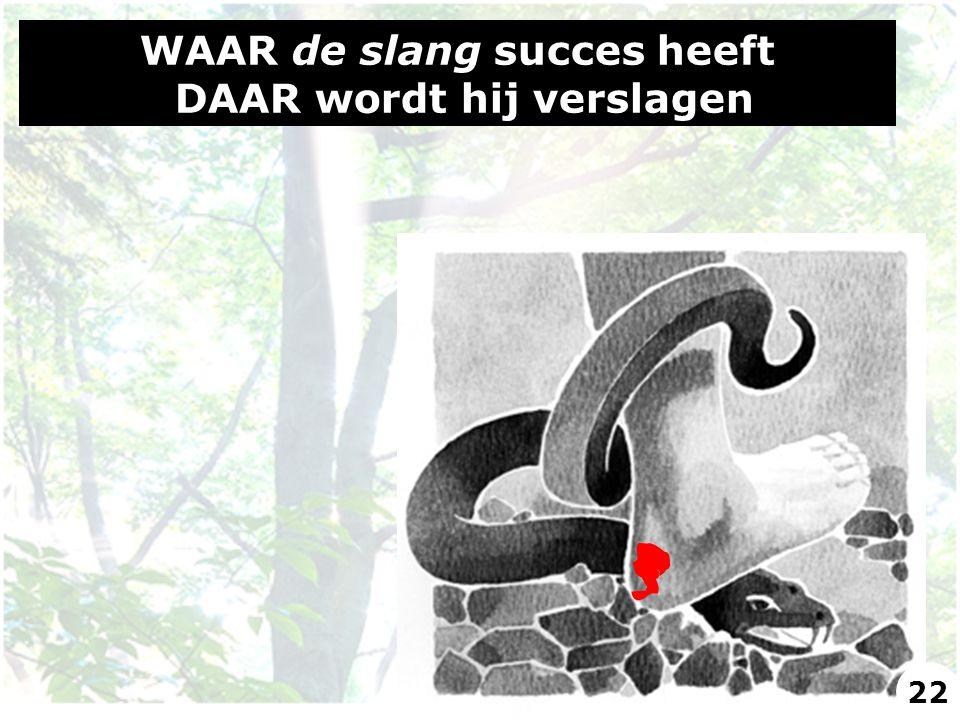 WAAR de slang succes heeft DAAR wordt hij verslagen 22