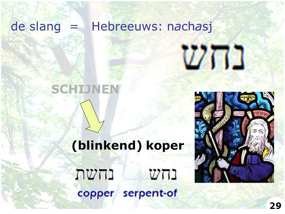 de slang = Hebreeuws: nachasj SCHIJNEN (blinkend) koper 29