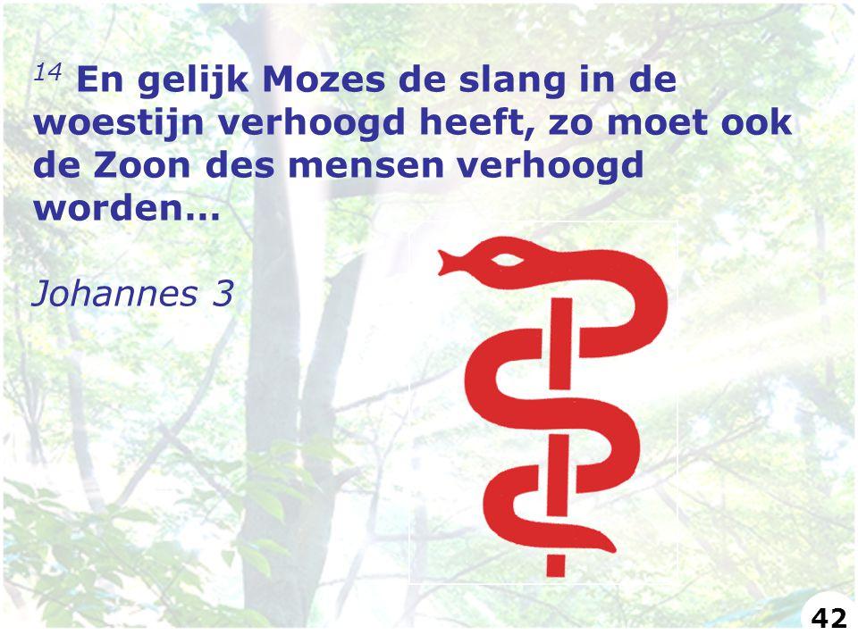 14 En gelijk Mozes de slang in de woestijn verhoogd heeft, zo moet ook de Zoon des mensen verhoogd worden… Johannes 3 42