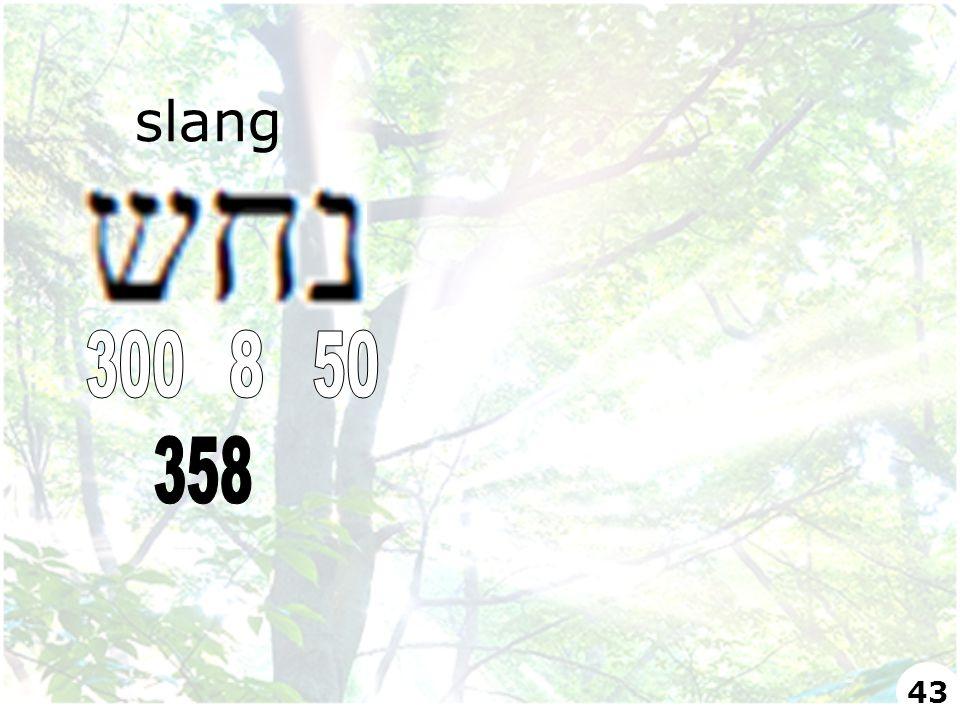 slang 43