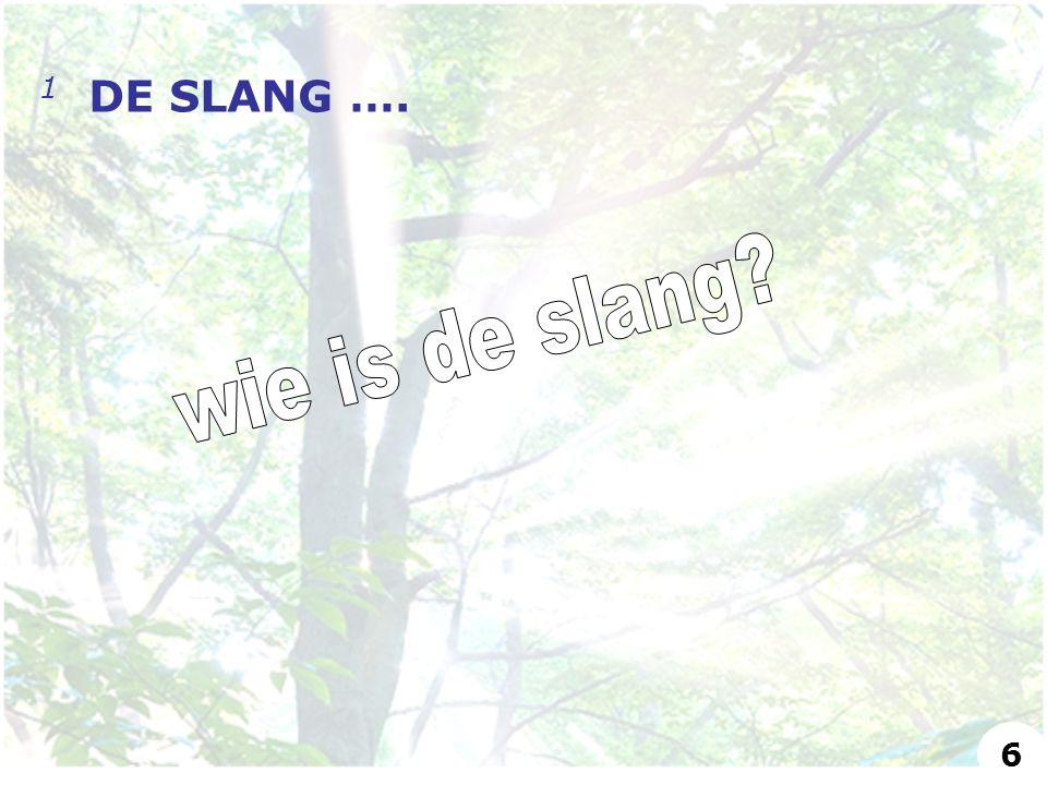 1 DE SLANG …. 6