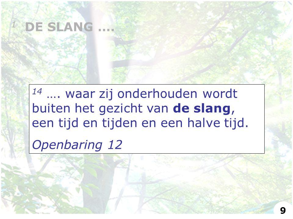14 …. waar zij onderhouden wordt buiten het gezicht van de slang, een tijd en tijden en een halve tijd. Openbaring 12 1 DE SLANG …. 9