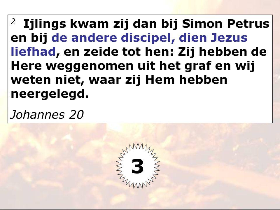 2 Ijlings kwam zij dan bij Simon Petrus en bij de andere discipel, dien Jezus liefhad, en zeide tot hen: Zij hebben de Here weggenomen uit het graf en