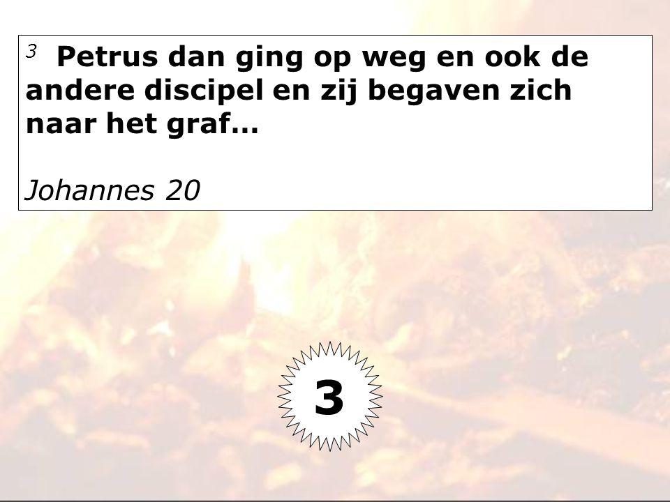 3 Petrus dan ging op weg en ook de andere discipel en zij begaven zich naar het graf… Johannes 20 3