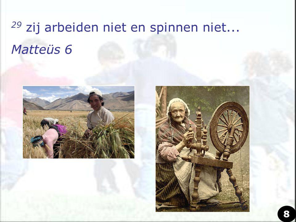 29 zij arbeiden niet en spinnen niet... Matteüs 6 8