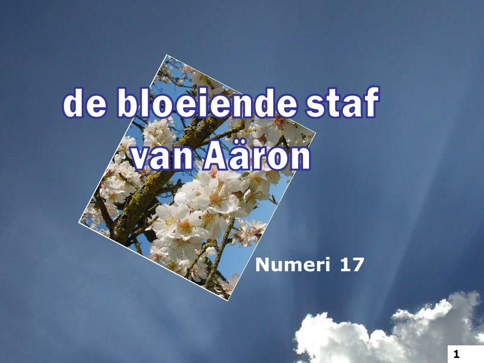 7 Mozes nu legde de staven neer vóór het aangezicht des HEREN in de tent der getuigenis. 12