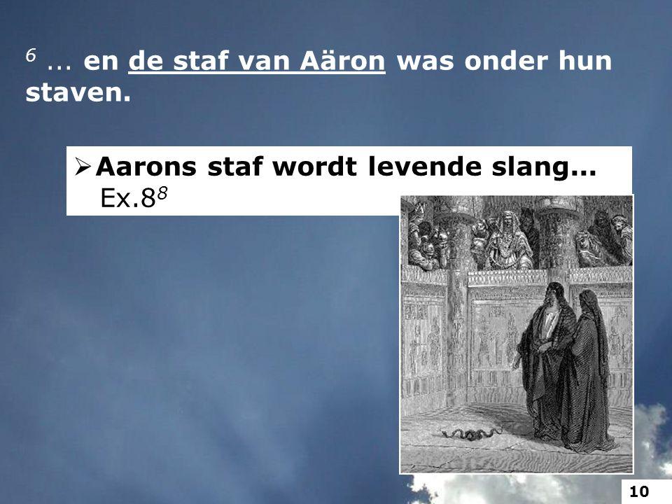 6... en de staf van Aäron was onder hun staven.  Aarons staf wordt levende slang... Ex.8 8 10