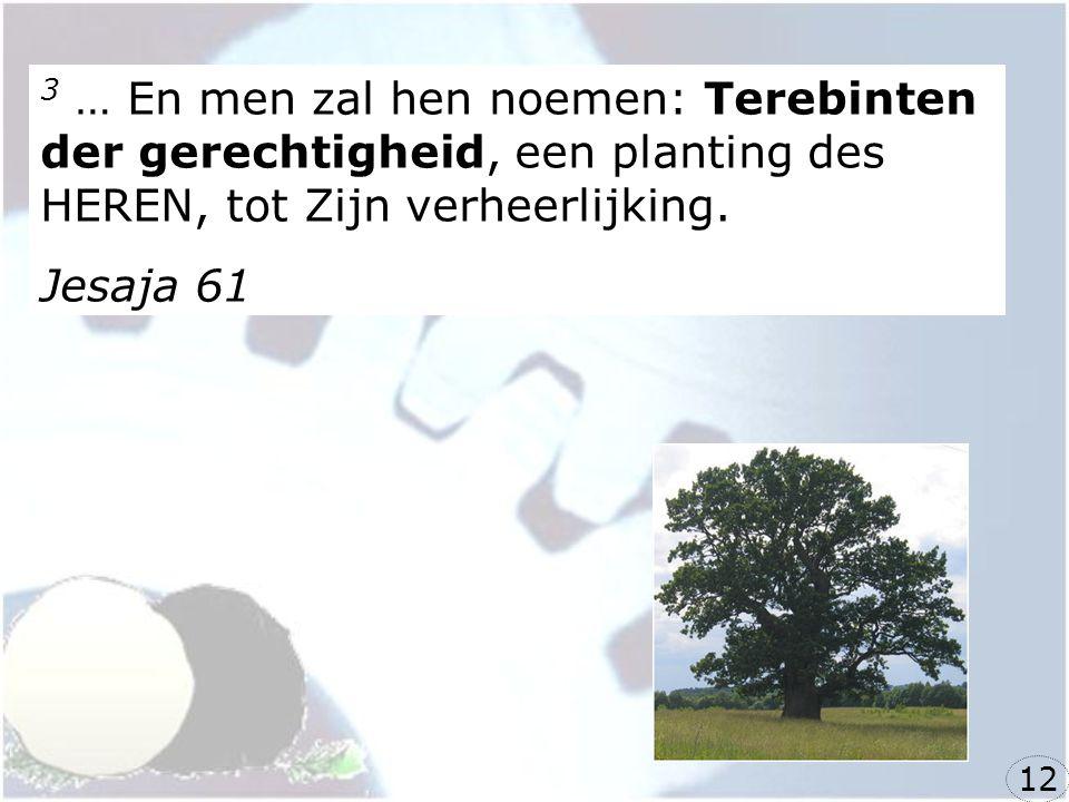 3 … En men zal hen noemen: Terebinten der gerechtigheid, een planting des HEREN, tot Zijn verheerlijking.