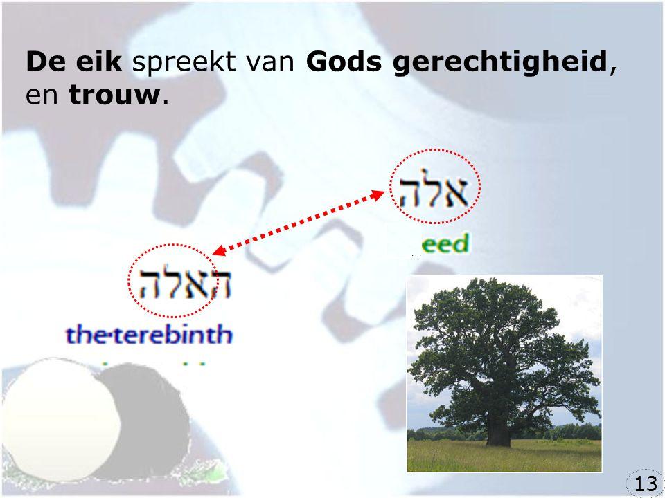 De eik spreekt van Gods gerechtigheid, en trouw. 13