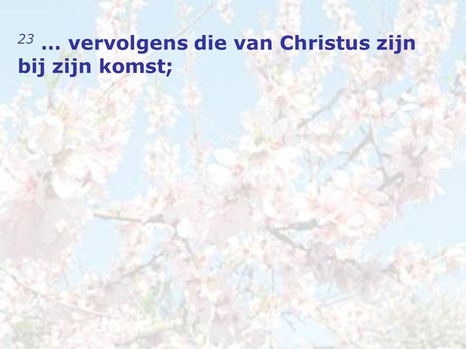 23 … vervolgens die van Christus zijn bij zijn komst;