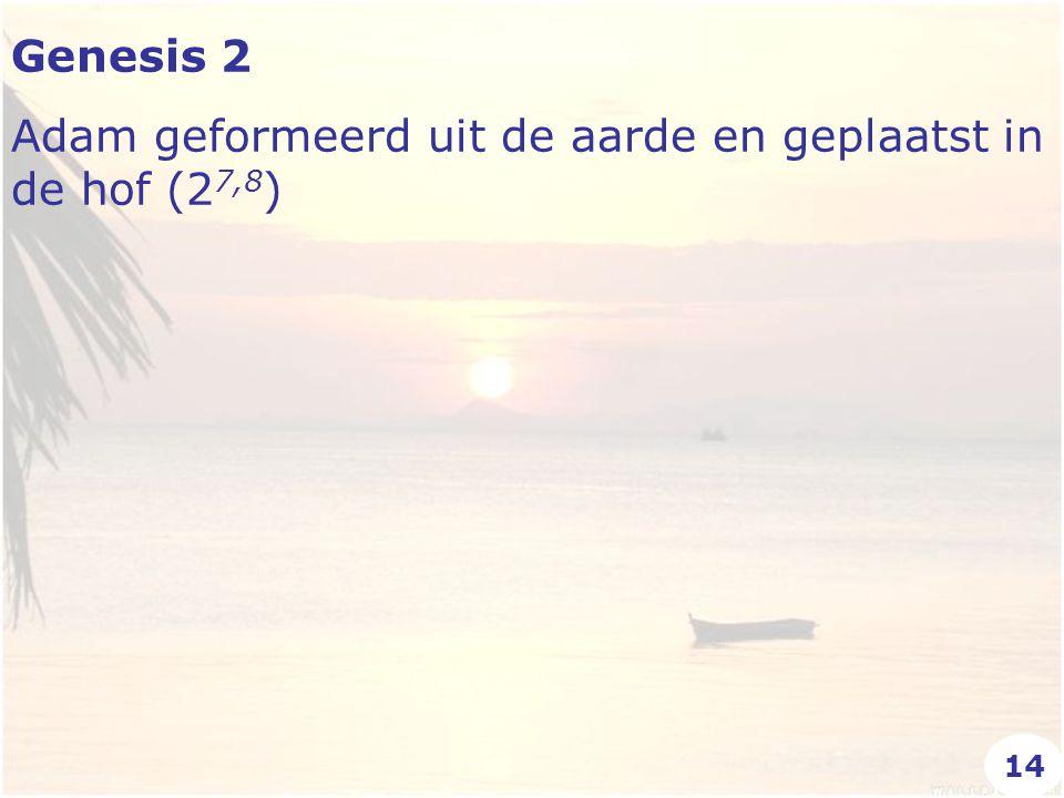 Genesis 2 Adam geformeerd uit de aarde en geplaatst in de hof (2 7,8 ) 14