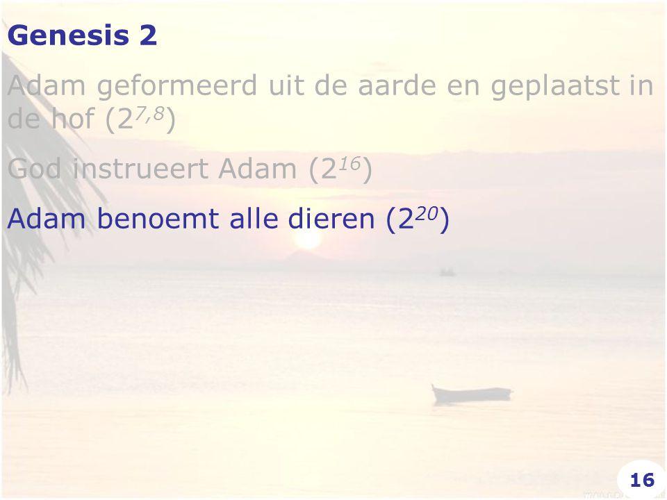Genesis 2 Adam geformeerd uit de aarde en geplaatst in de hof (2 7,8 ) God instrueert Adam (2 16 ) Adam benoemt alle dieren (2 20 ) 16