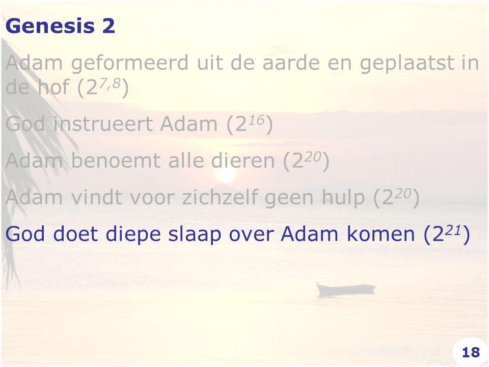 Genesis 2 Adam geformeerd uit de aarde en geplaatst in de hof (2 7,8 ) God instrueert Adam (2 16 ) Adam benoemt alle dieren (2 20 ) Adam vindt voor zichzelf geen hulp (2 20 ) God doet diepe slaap over Adam komen (2 21 ) 18