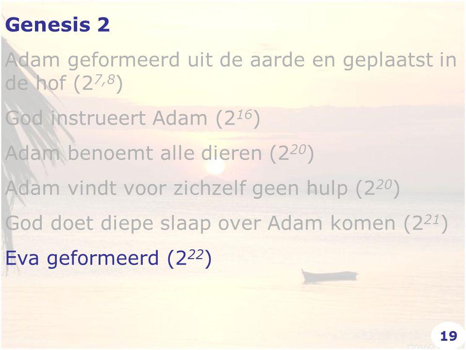 Genesis 2 Adam geformeerd uit de aarde en geplaatst in de hof (2 7,8 ) God instrueert Adam (2 16 ) Adam benoemt alle dieren (2 20 ) Adam vindt voor zi