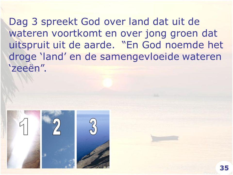 """Dag 3 spreekt God over land dat uit de wateren voortkomt en over jong groen dat uitspruit uit de aarde. """"En God noemde het droge 'land' en de samengev"""