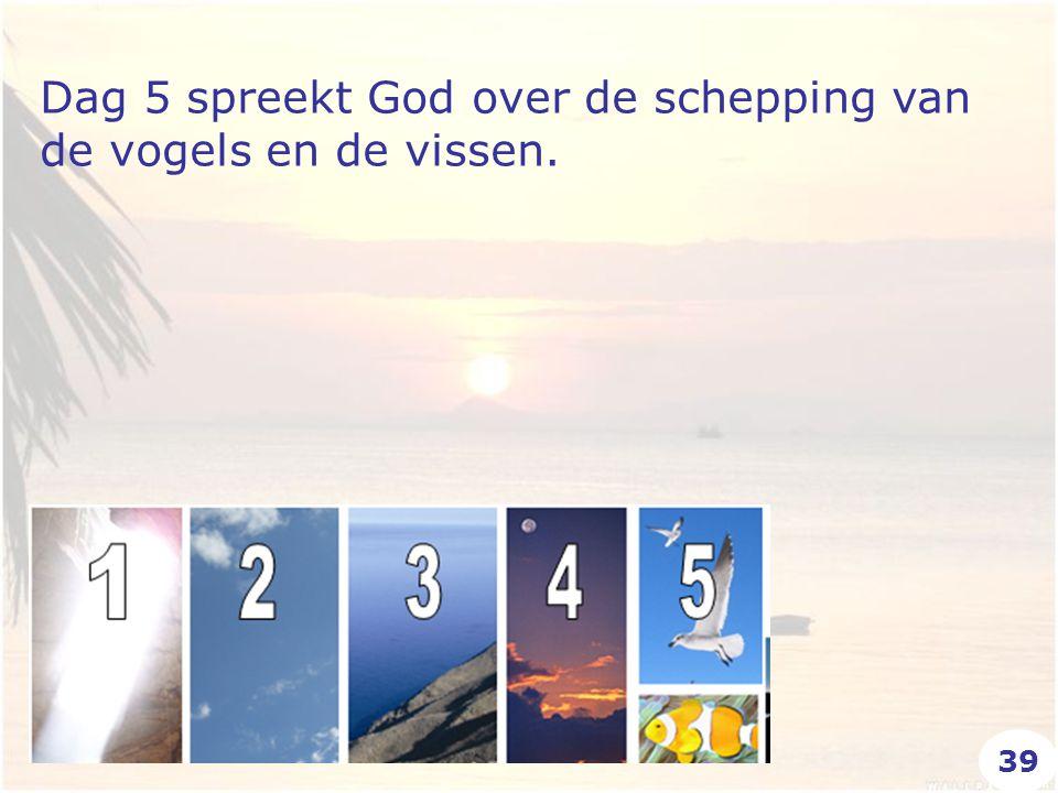 Dag 5 spreekt God over de schepping van de vogels en de vissen. 39