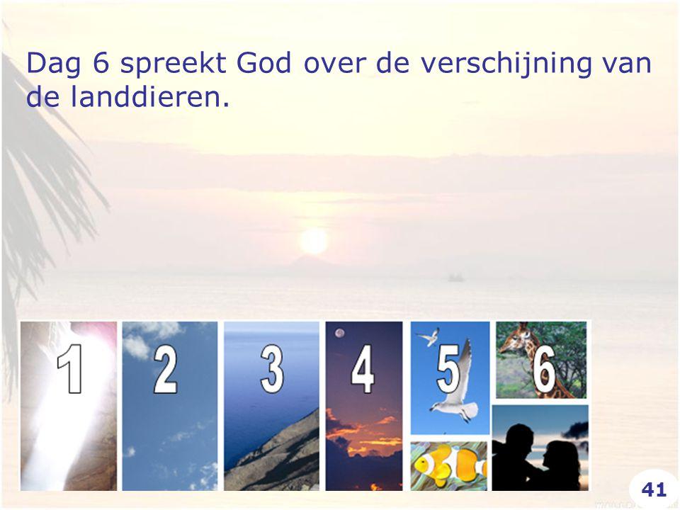 Dag 6 spreekt God over de verschijning van de landdieren. 41