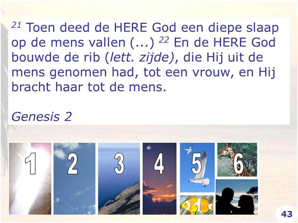21 Toen deed de HERE God een diepe slaap op de mens vallen (...) 22 En de HERE God bouwde de rib (lett.