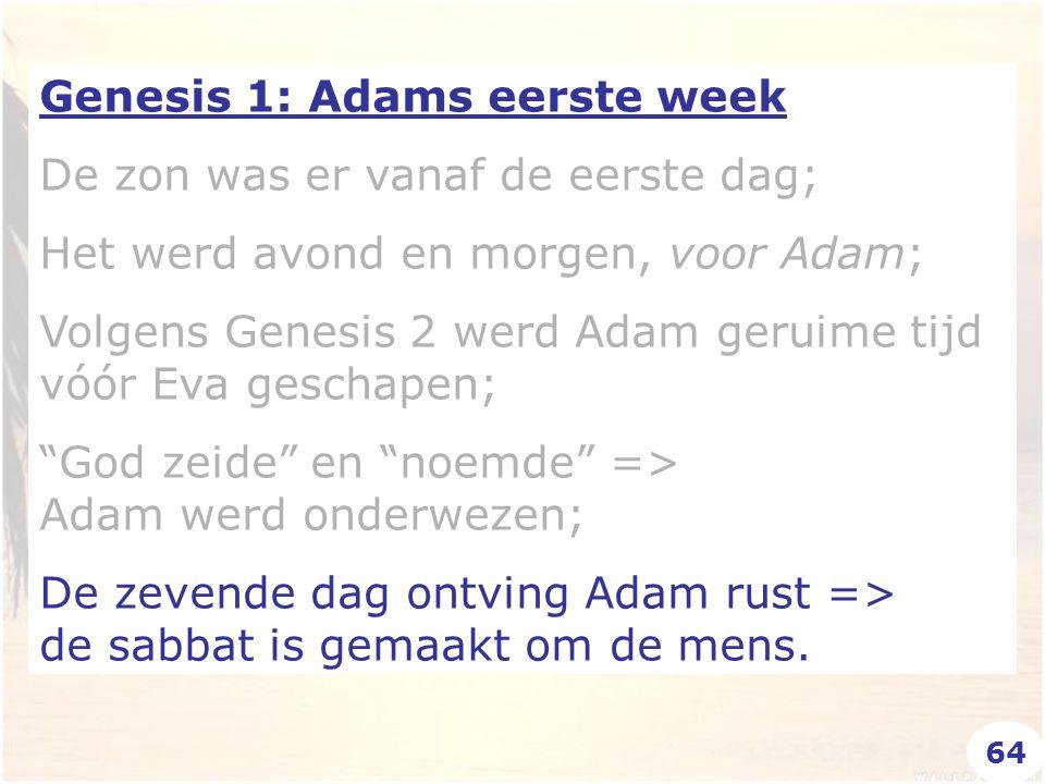 Genesis 1: Adams eerste week De zon was er vanaf de eerste dag; Het werd avond en morgen, voor Adam; Volgens Genesis 2 werd Adam geruime tijd vóór Eva geschapen; God zeide en noemde => Adam werd onderwezen; De zevende dag ontving Adam rust => de sabbat is gemaakt om de mens.