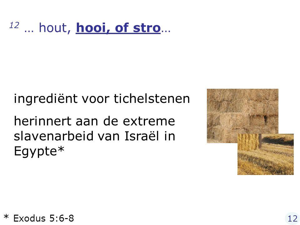 12 … hout, hooi, of stro… ingrediënt voor tichelstenen herinnert aan de extreme slavenarbeid van Israël in Egypte* * Exodus 5:6-8 12