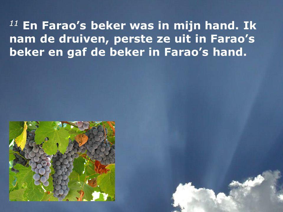 11 En Farao's beker was in mijn hand. Ik nam de druiven, perste ze uit in Farao's beker en gaf de beker in Farao's hand.