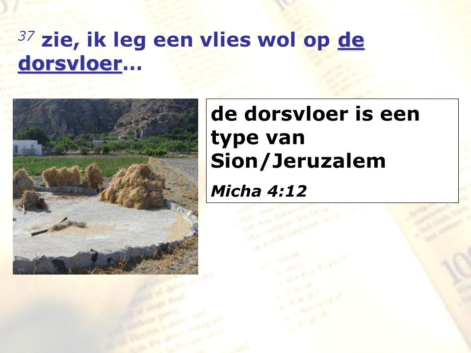 zzz de dorsvloer 37 zie, ik leg een vlies wol op de dorsvloer… de dorsvloer is een type van Sion/Jeruzalem Micha 4:12