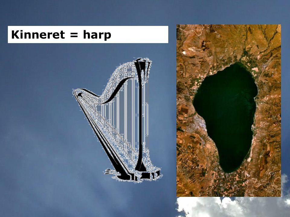 Kinneret = harp