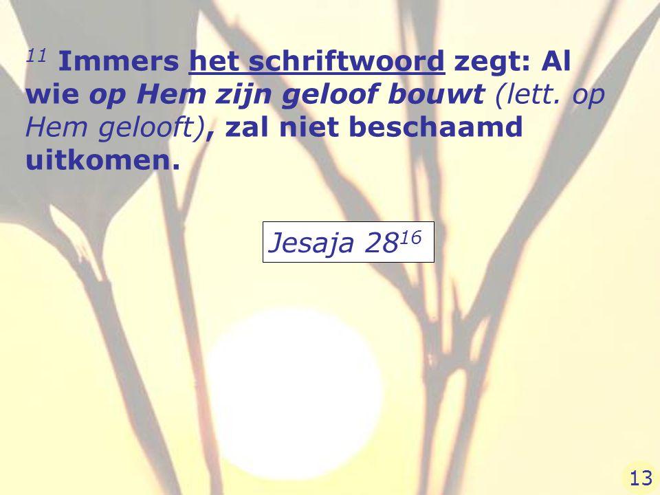 11 Immers het schriftwoord zegt: Al wie op Hem zijn geloof bouwt (lett. op Hem gelooft), zal niet beschaamd uitkomen. Jesaja 28 16 13