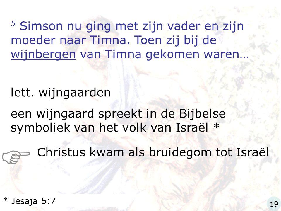 5 Simson nu ging met zijn vader en zijn moeder naar Timna. Toen zij bij de wijnbergen van Timna gekomen waren… lett. wijngaarden een wijngaard spreekt
