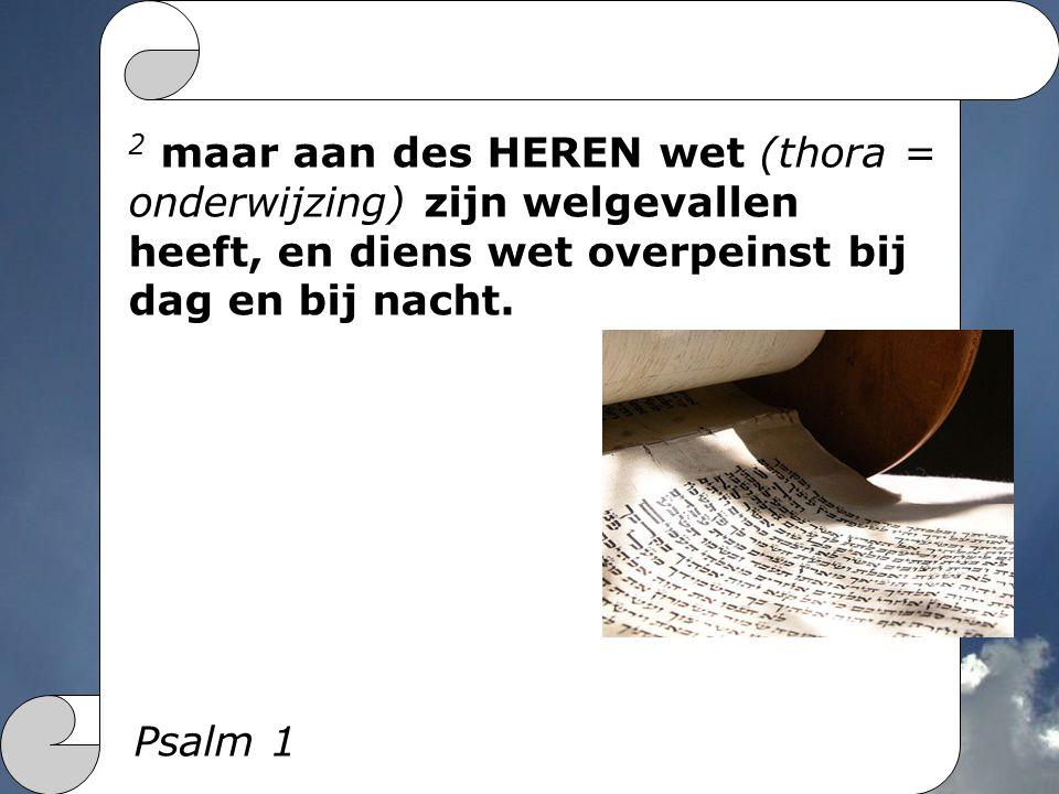 2 maar aan des HEREN wet (thora = onderwijzing) zijn welgevallen heeft, en diens wet overpeinst bij dag en bij nacht.