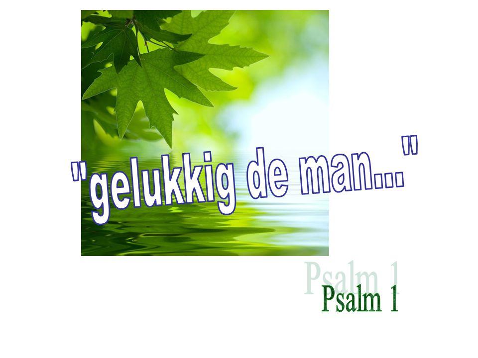 het boek der Psalmen *.VIJF boeken. 1. 1-41 2. 42-72 3.