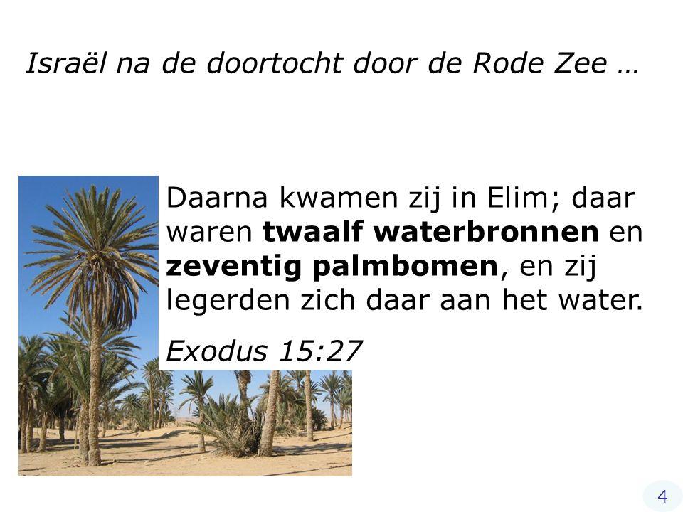 Daarna kwamen zij in Elim; daar waren twaalf waterbronnen en zeventig palmbomen, en zij legerden zich daar aan het water. Exodus 15:27 Israël na de do