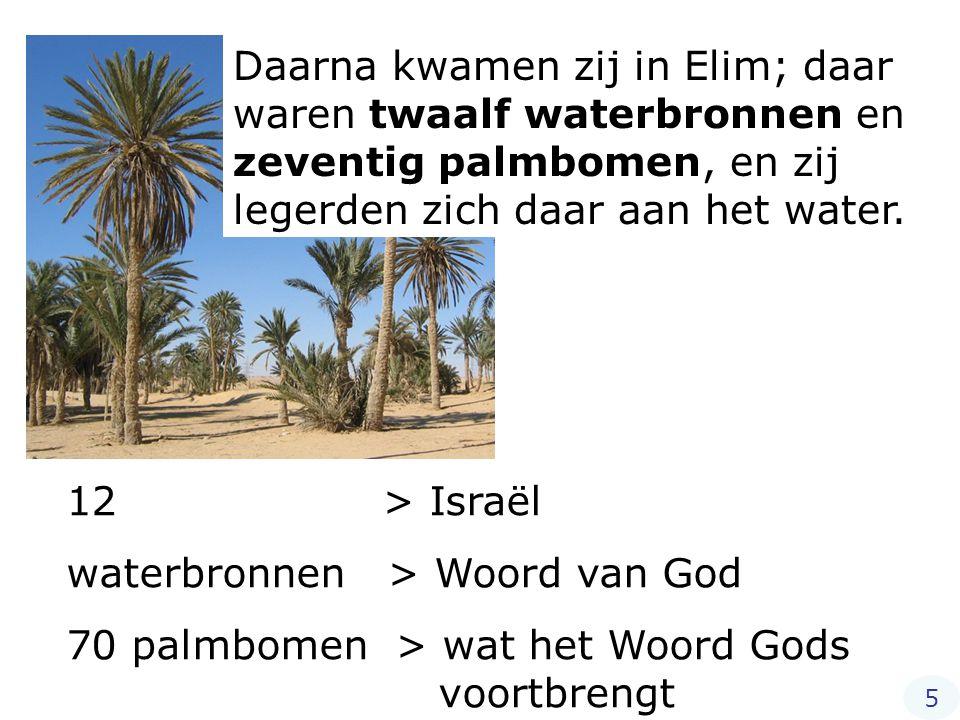 Daarna kwamen zij in Elim; daar waren twaalf waterbronnen en zeventig palmbomen, en zij legerden zich daar aan het water. 12 > Israël waterbronnen > W