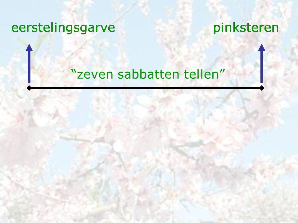 """eerstelingsgarvepinksteren """"zeven sabbatten tellen"""" eerstelingsgarvepinkstereneerstelingsgarvepinksteren"""