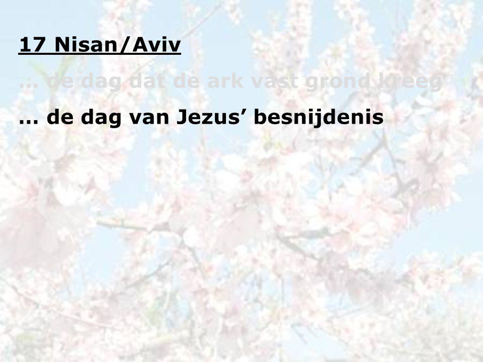 17 Nisan/Aviv … de dag dat de ark vast grond kreeg … de dag van Jezus' besnijdenis