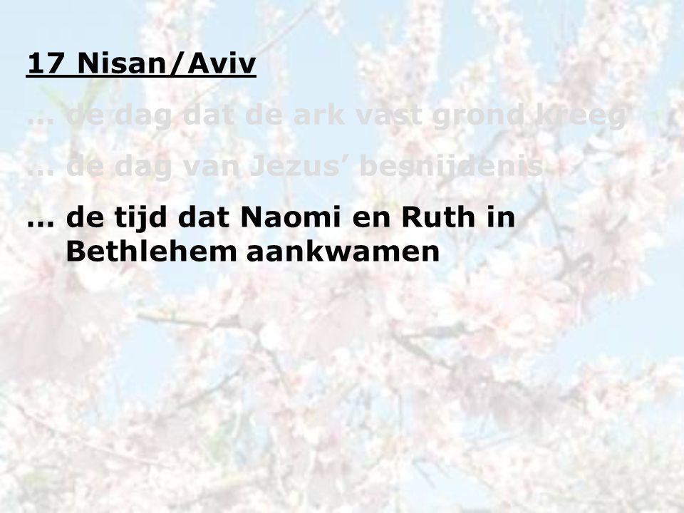 17 Nisan/Aviv … de dag dat de ark vast grond kreeg … de dag van Jezus' besnijdenis … de tijd dat Naomi en Ruth in Bethlehem aankwamen