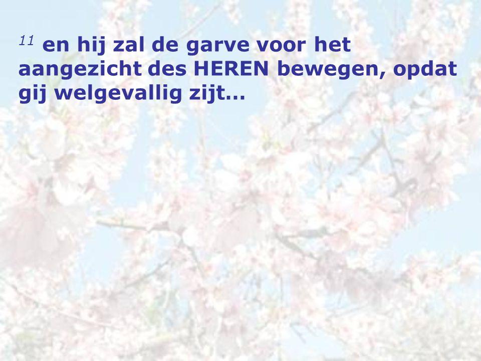 11 en hij zal de garve voor het aangezicht des HEREN bewegen, opdat gij welgevallig zijt…