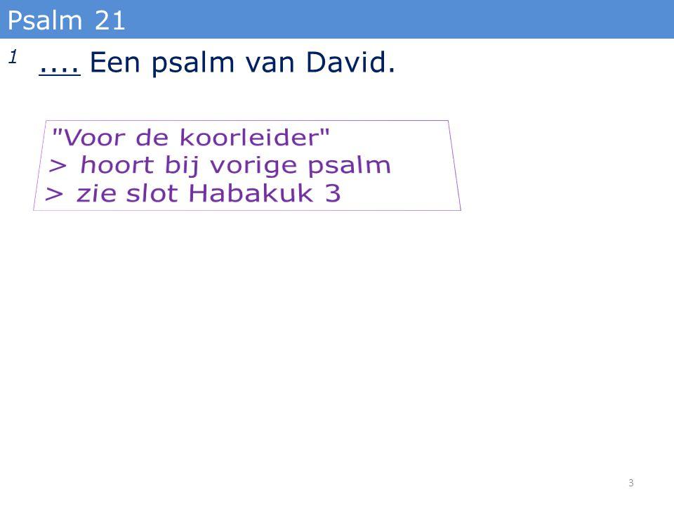 14 Verhef U, o HERE, in uw kracht, wij willen uw sterkte met psalmen bezingen. Psalm 21 24
