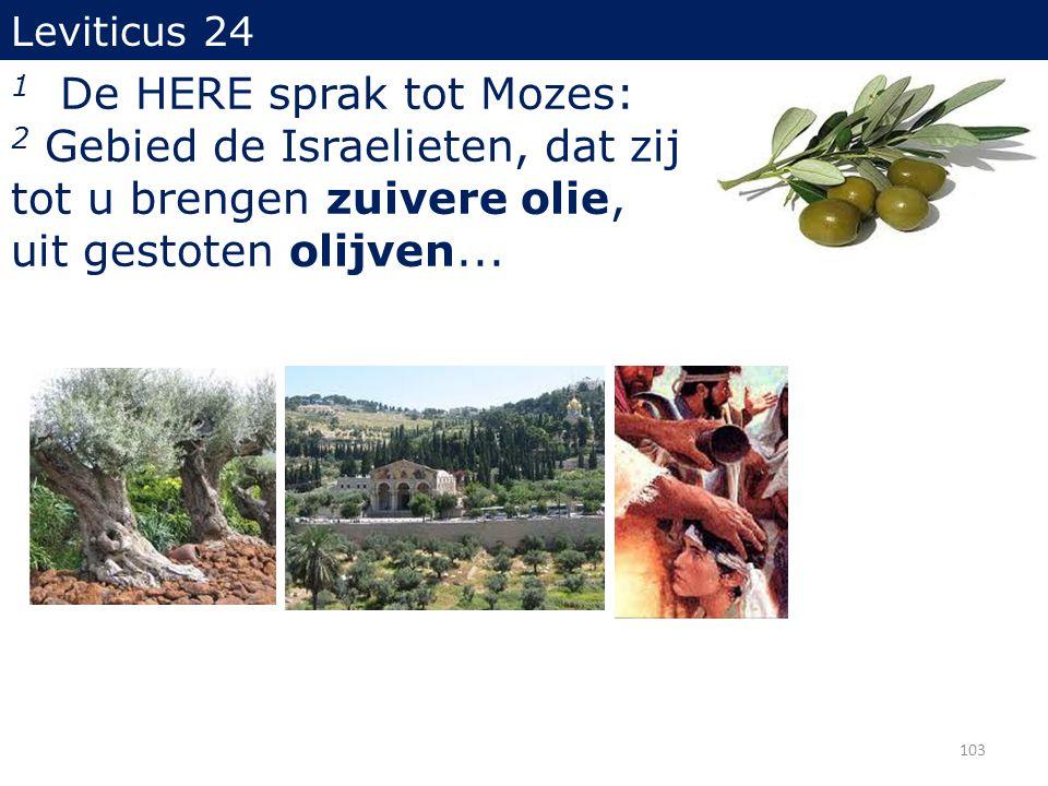 103 Leviticus 24 1 De HERE sprak tot Mozes: 2 Gebied de Israelieten, dat zij tot u brengen zuivere olie, uit gestoten olijven...