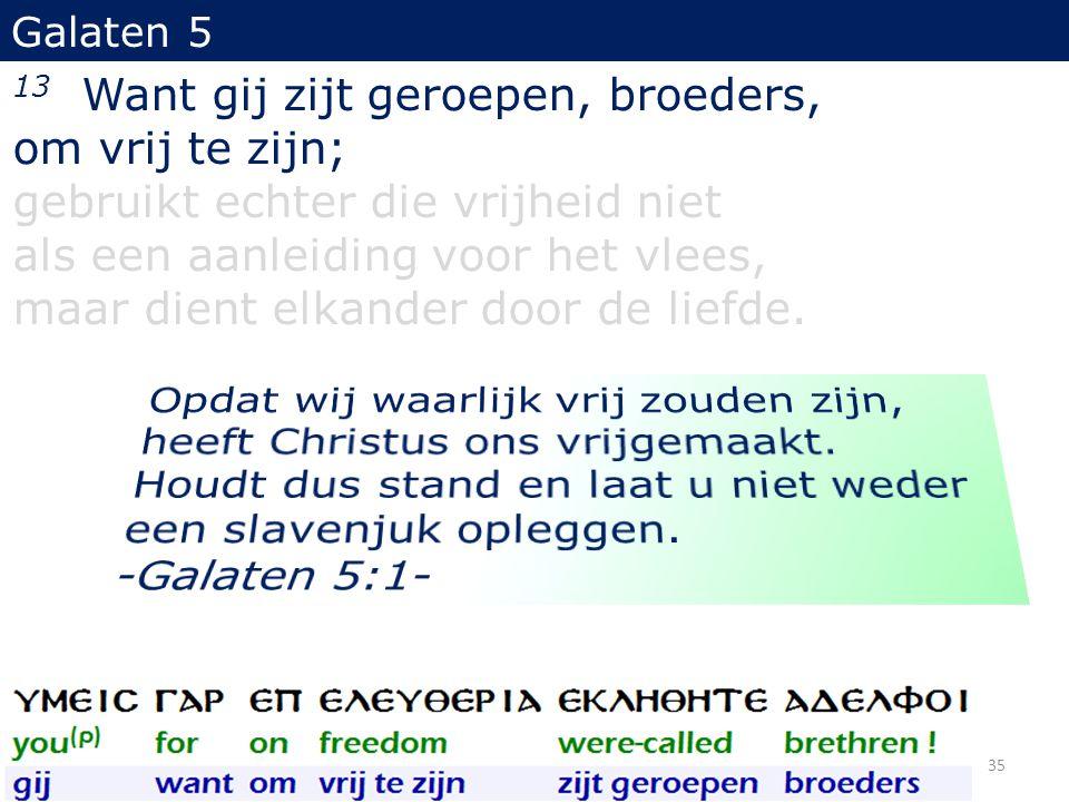 13 Want gij zijt geroepen, broeders, om vrij te zijn; gebruikt echter die vrijheid niet als een aanleiding voor het vlees, maar dient elkander door de