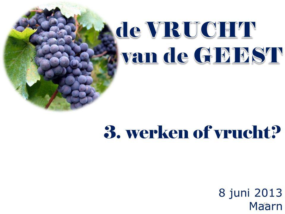 8 juni 2013 Maarn 3. werken of vrucht? 61
