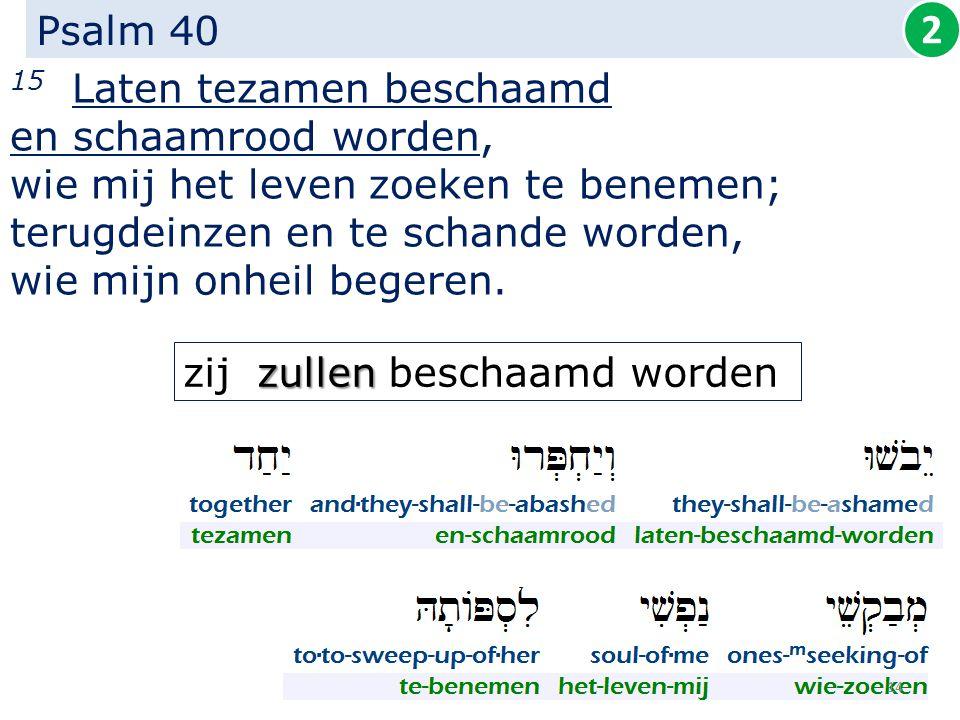 Psalm 40 15 Laten tezamen beschaamd en schaamrood worden, wie mij het leven zoeken te benemen; terugdeinzen en te schande worden, wie mijn onheil bege