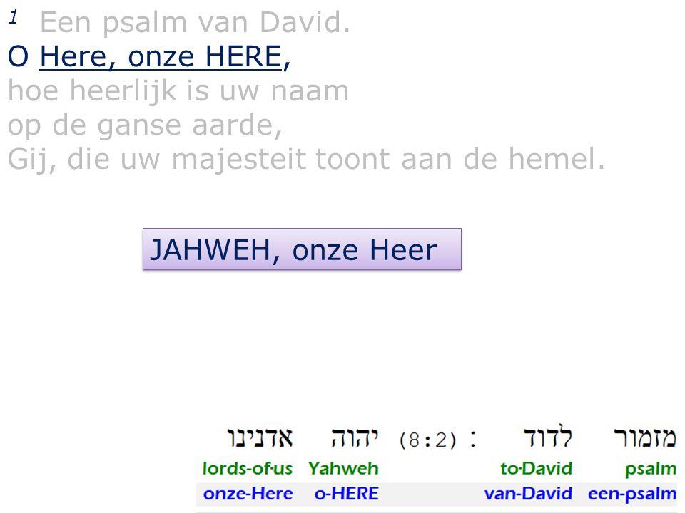 1 Een psalm van David. O Here, onze HERE, hoe heerlijk is uw naam op de ganse aarde, Gij, die uw majesteit toont aan de hemel. JAHWEH, onze Heer